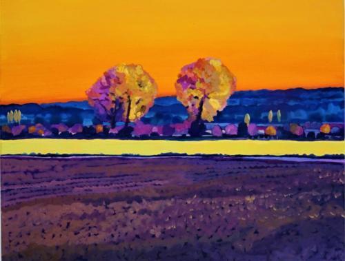 Twee bomen met een mooi oranje avond licht 2020 30 x40