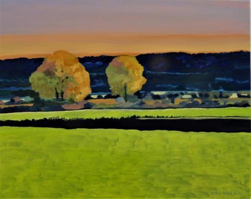 Twee bomen met zachte avond licht 2020 50 x40cm